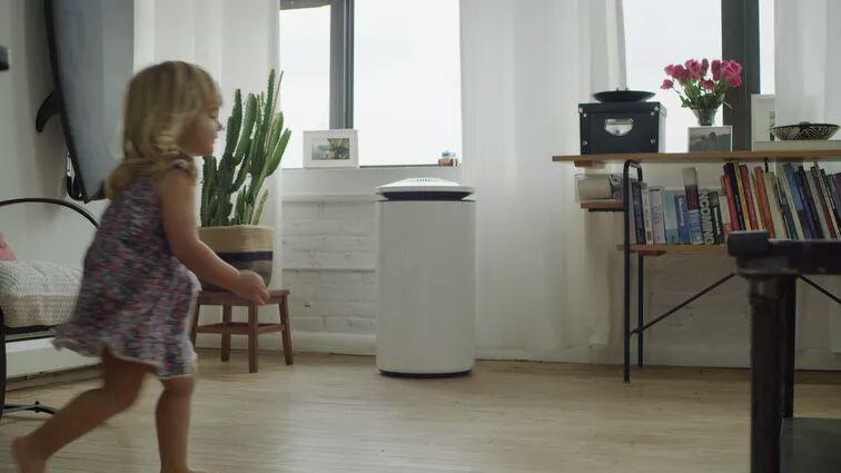 Biology-Based Air Purifiers