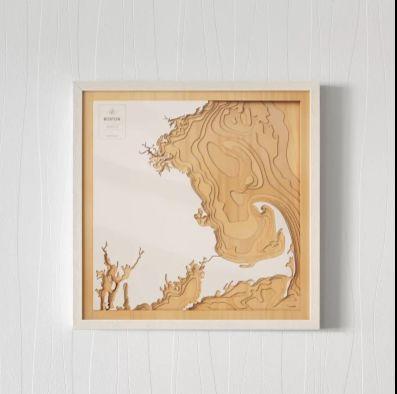 Coastal Topography Maps