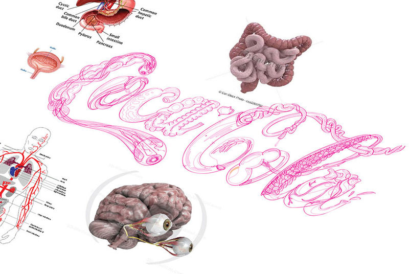 Anatomical Emblem Redesigns