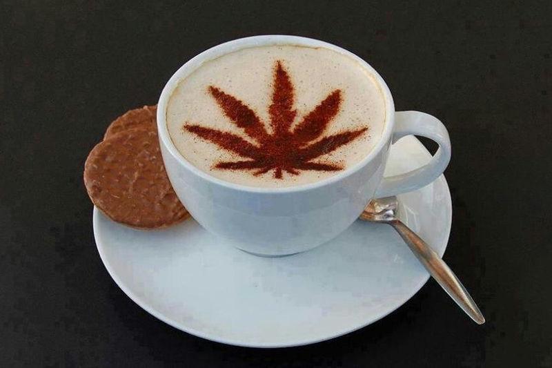 Legalized Cannabis Cafes