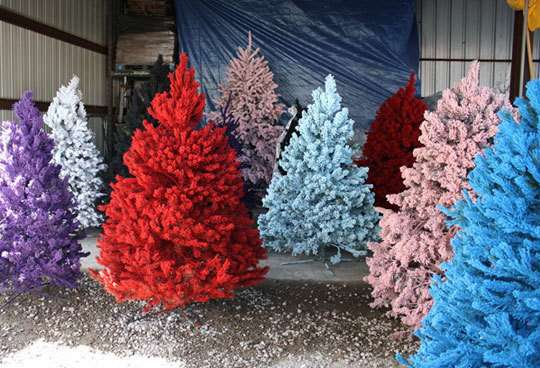 Colorful Christmas Tree Images.Colorful Christmas Trees Colorful Christmas Trees