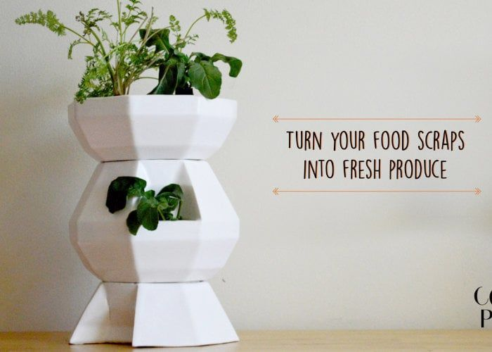 Food Scrap Produce Pottery