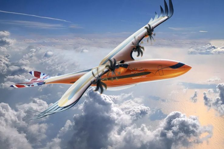 Bird-Inspired Plane Designs