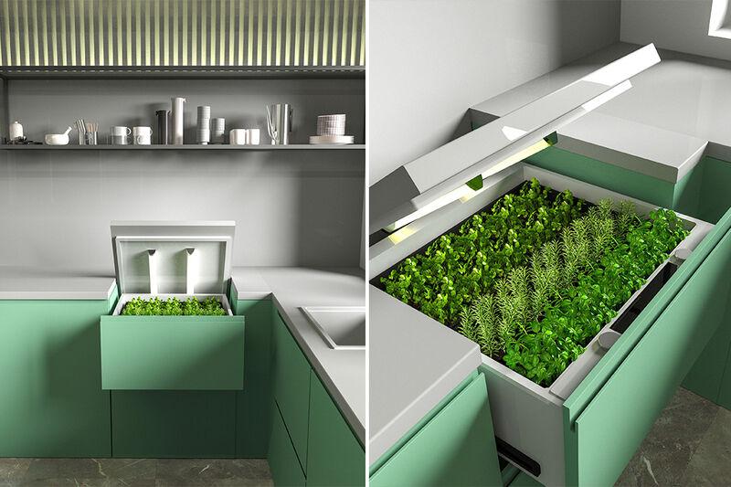Kitchen Cabinet Herb Gardens