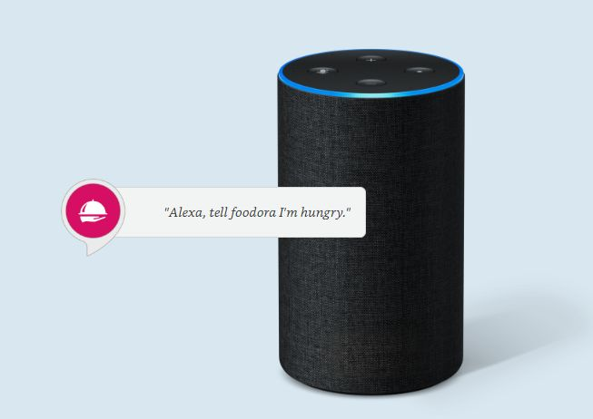 Voice-Ordering Delivery Features