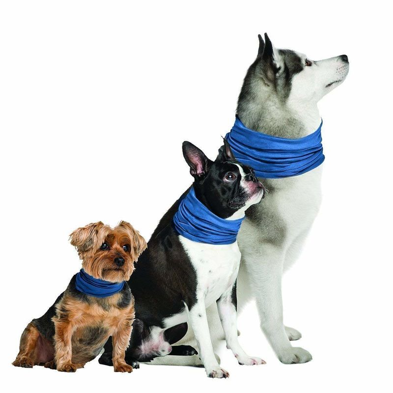 Cooling Canine Collars