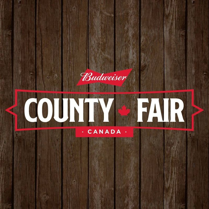 Immersive Country Music Fairs