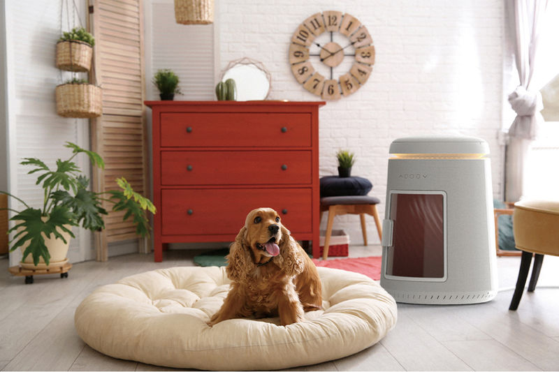 Pet Grooming Dryer Appliances