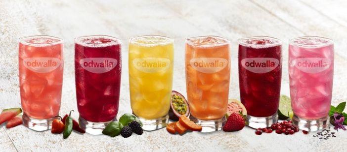 Naturally Sweetened Artisanal Drinks