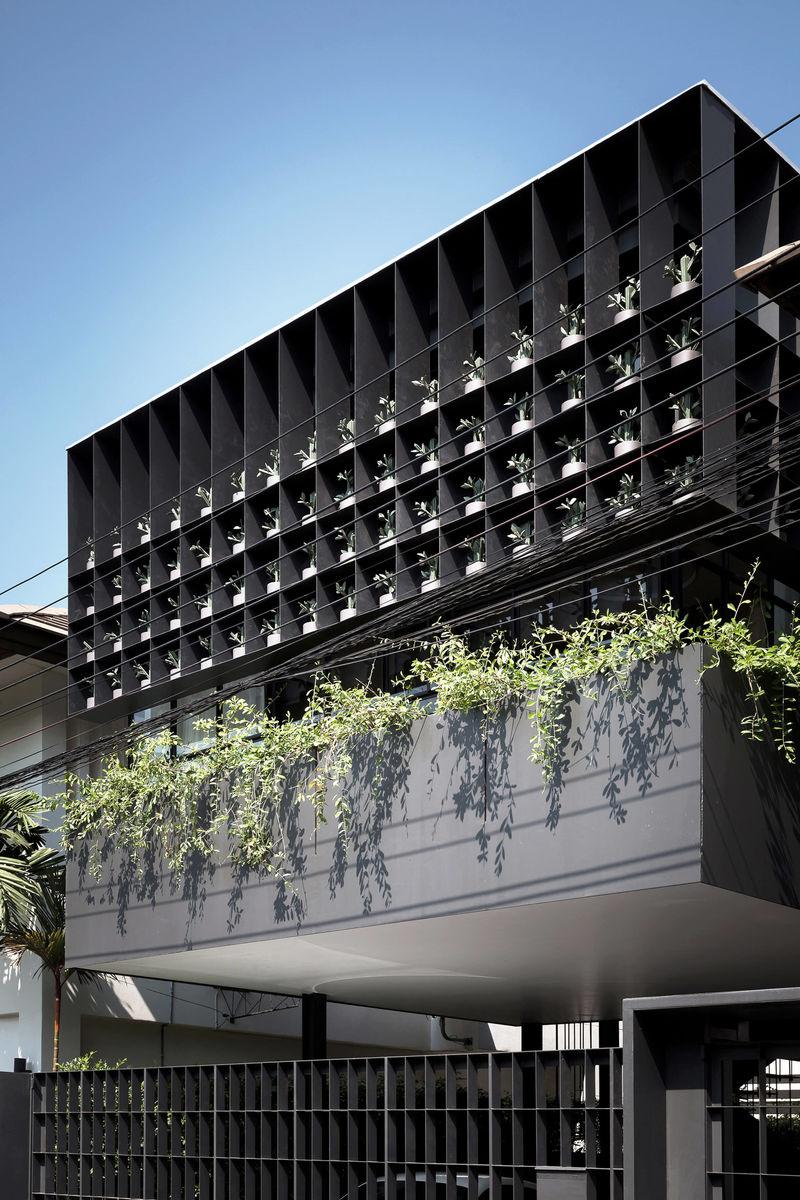 Olive Tree Building Facades