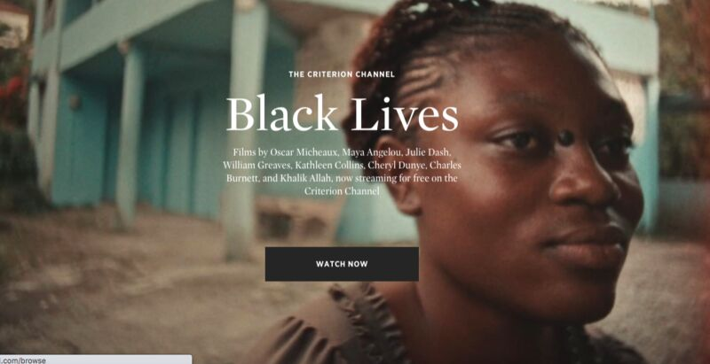 Black Filmmaker Collections