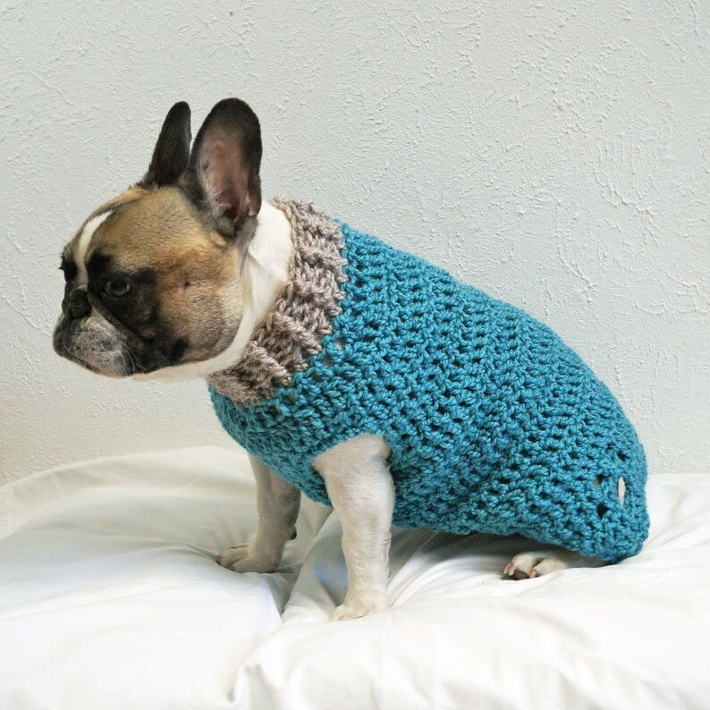 Crocheted Paw-Print Dog Jumpers