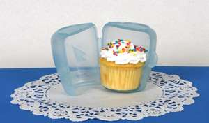 Cute Cupcake Carriers