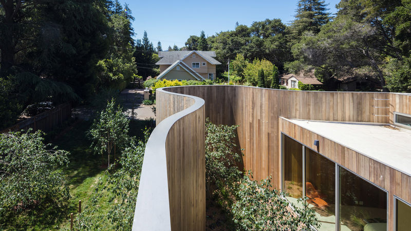 Contemporary Curved Wooden Walls