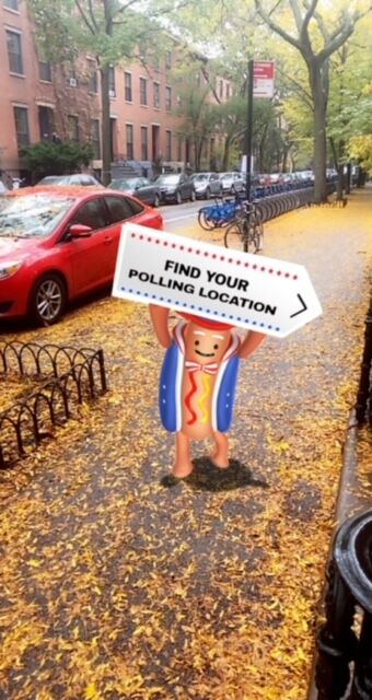 Election-Themed Social Media Filters