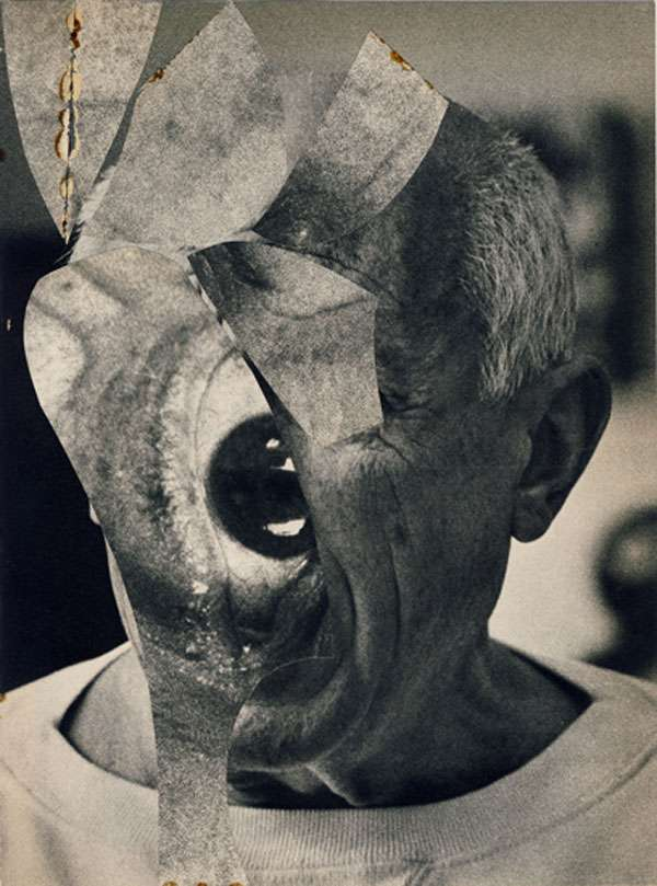 Disfigured Collages