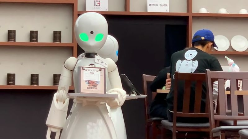 Human-Operated Robotic Servers