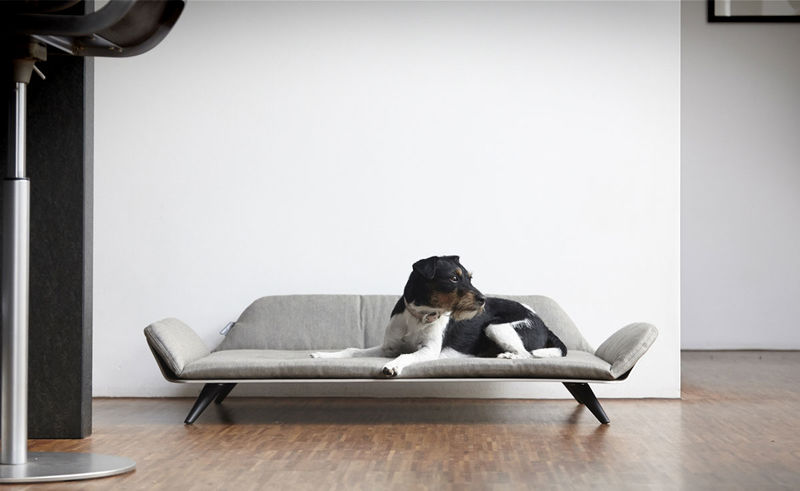 Post-Modern Pet Furniture