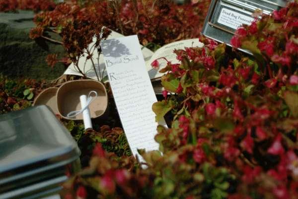 Dead Bug Funeral Kits