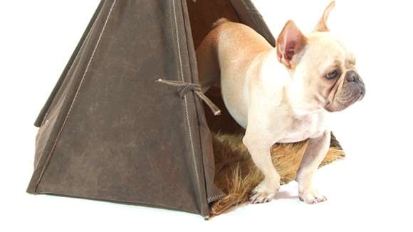 Military Pet Abodes