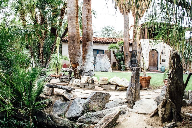 Immersive Desert Botanical Gardens