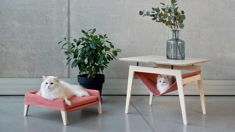 Design-Forward Cat Furniture