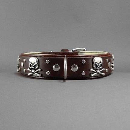 Etsy Custom Dog Collars