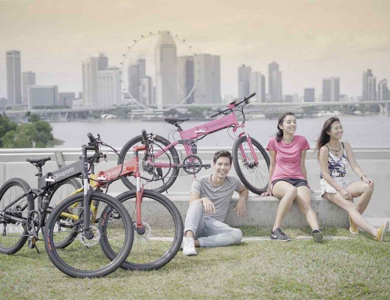 Self-Charging Electric Bikes