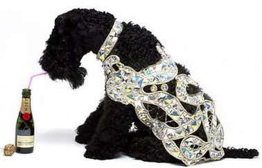 £2,500 Diamond Dog Coat