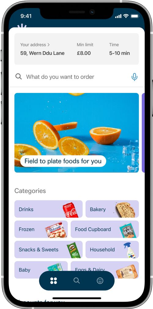 10-Minute Grocery Delivery Platforms