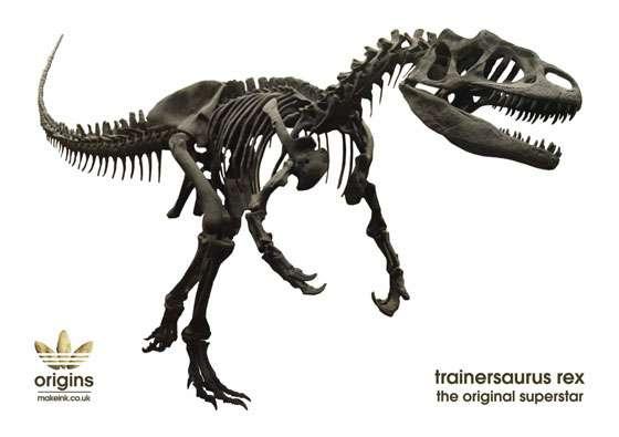 Prehistoric Sportswear Models
