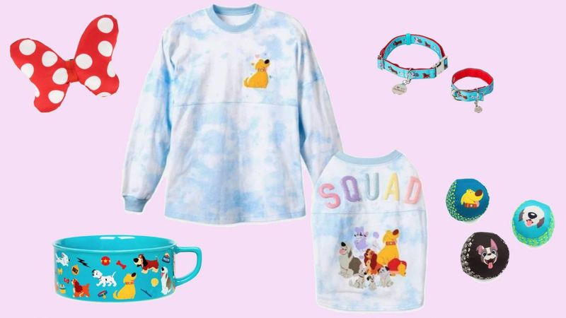 Coordinated Disney Pet Collections
