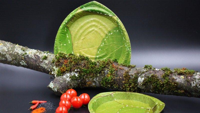 Biodegradable Leaf Plates & Biodegradable Leaf Plates : disposable dishes