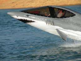 Diving Dolphin Powerboats