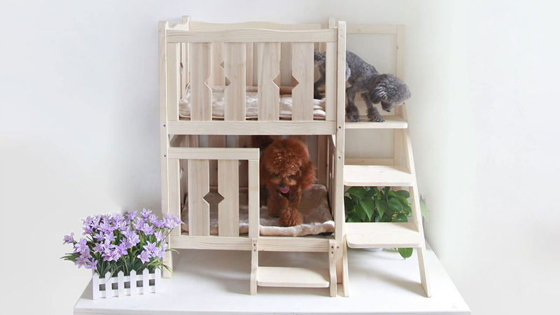 Multi-Level Dog Beds