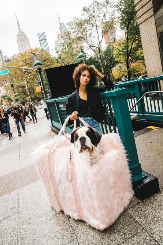 Oversized Dog-Carrying Bags