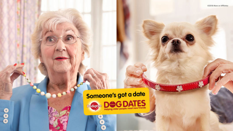 Senior Companionship Dog Dates