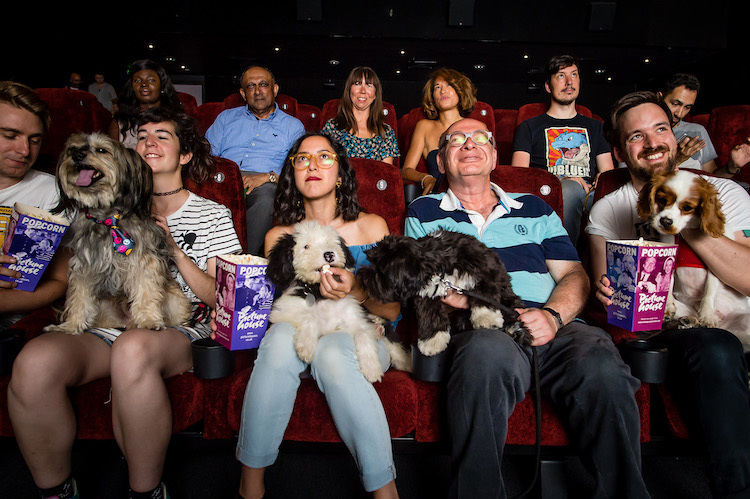 Dog-Friendly Movie Screenings