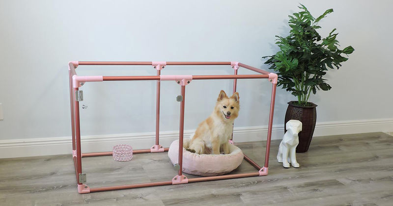 Clear-Walled Dog Pens