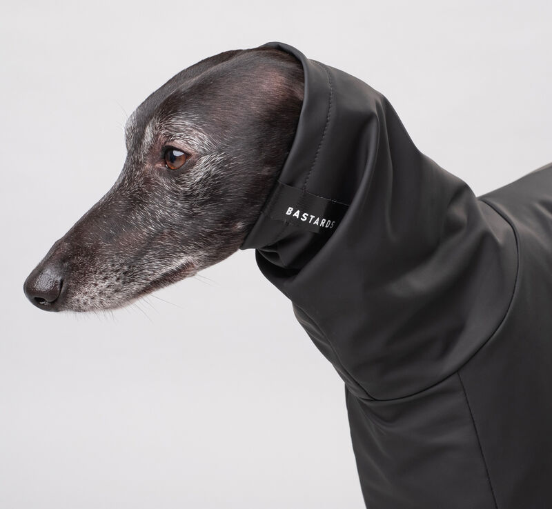 Made-to-Measure Pet Clothing