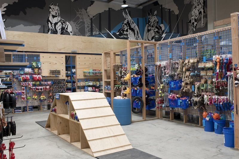 Interactive pet shops dog store - Dogs for small spaces concept ...
