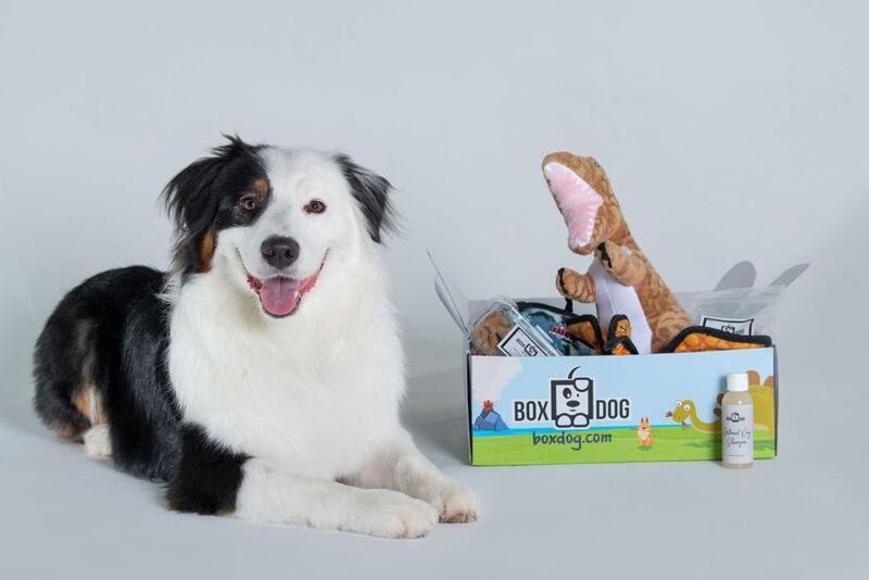 Personalized Pet Subscription Boxes