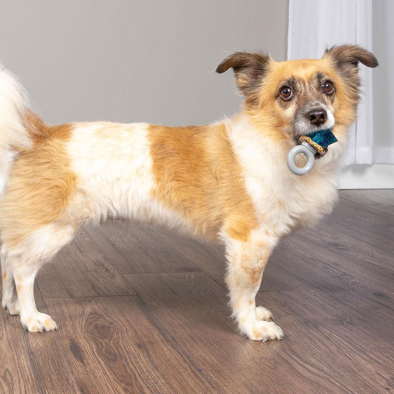 Ring-Shaped Dog Treat Toys