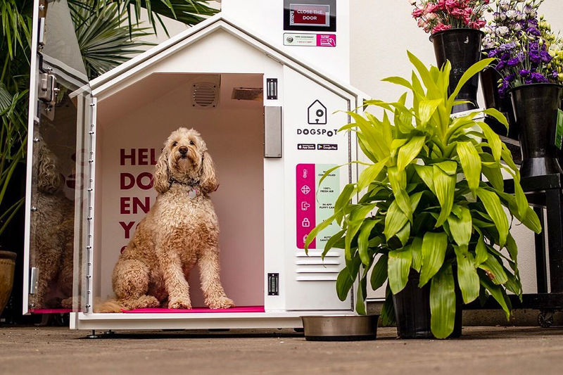 Connected Canine Lockers