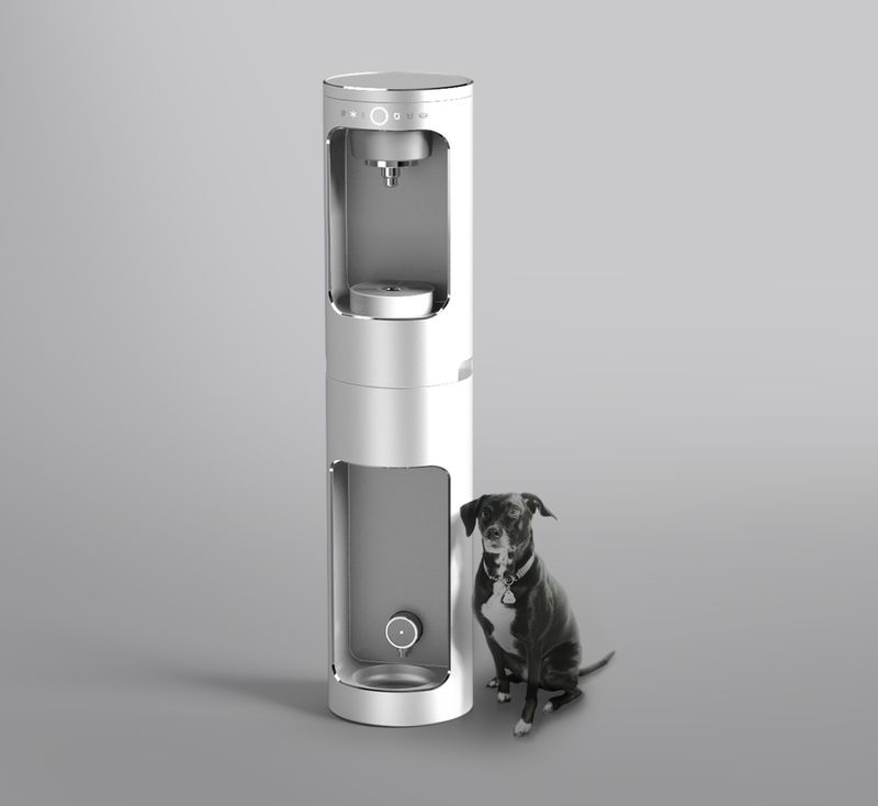 Canine-Friendly Water Purifiers