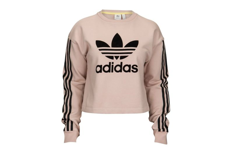 Bold Cropped Logo Hoodies : dusty pink cropped sweater