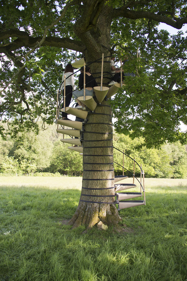 Tree-Hugging Spiral Staircases