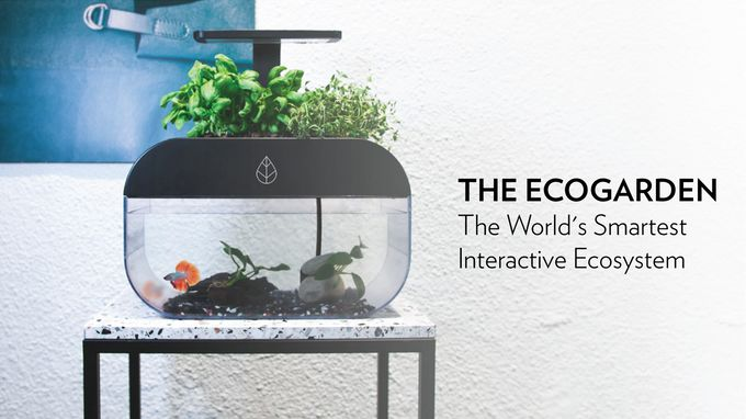Connected Self-Sustaining Gardens