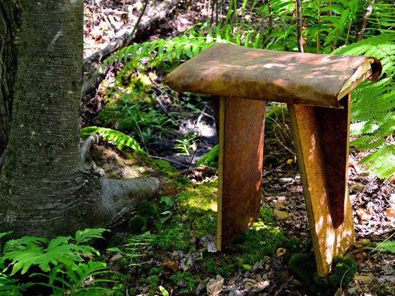 Organic Fungal Furniture