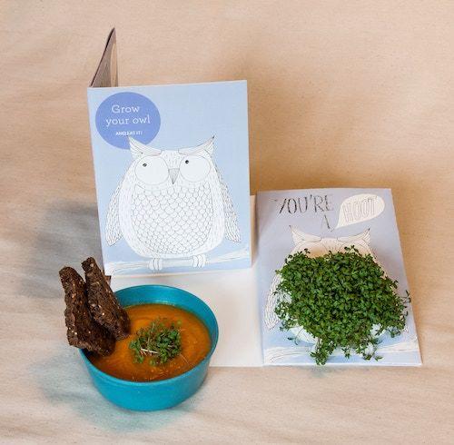 Edible Microgreen Greeting Cards